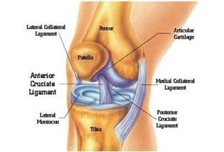 איימקס פיזיותרפיה בתל אביב - טיפול בכאבי ברכיים