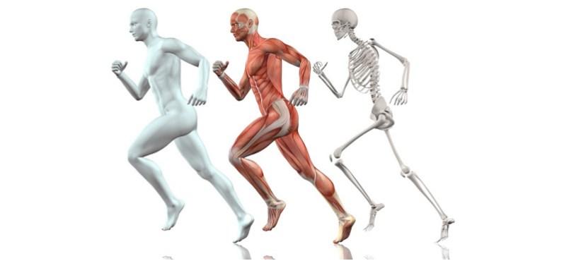שיפור מיומנויות ריצה